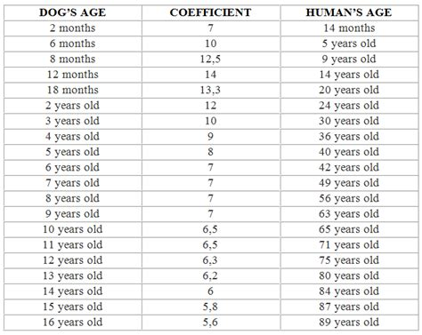 age to human age correlation between human age and age technical information bio pharmachemie