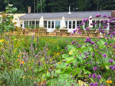 View Of The Tea Room Conservatory From Within The Walled Pythouse Walled Garden
