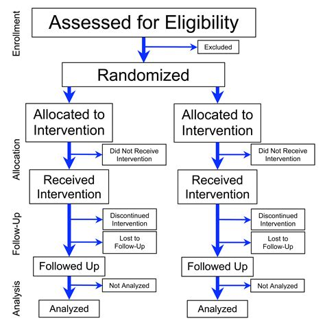 Fitxer Flowchart Of Phases Of Parallel Randomized Trial