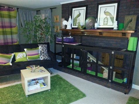 cage living room custom rabbit cage ideas lop obsess