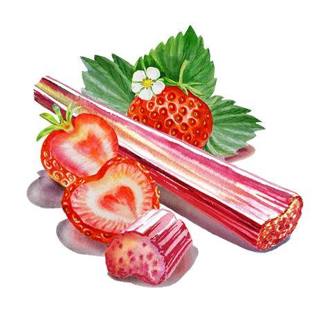 Duvet Clip Rhubarb Strawberry Painting By Irina Sztukowski