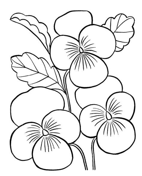 coloring pages printable of flowers flower coloring pages for adults az coloring pages