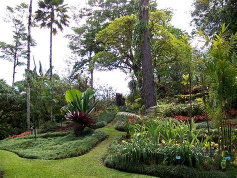 San Jose Botanical Garden San Vito Costa Rica City Guide Go Visit Costa Rica