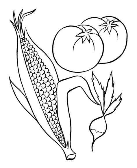 Indian Corn Coloring Pages Coloring Home Corn Color Page