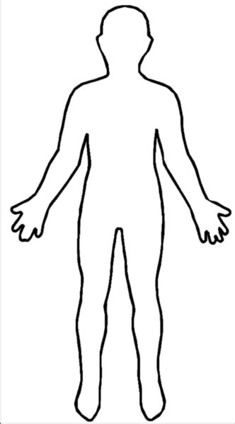 body map clipart best