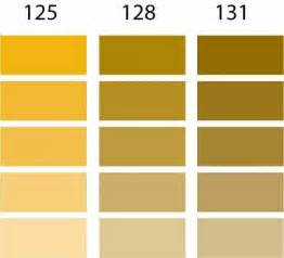 Golden Color Shades by 17 Best Ideas About Pantone Gold On Pinterest Gold Color