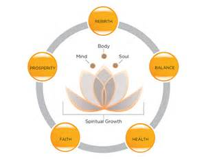 Meaning Of The Lotus Flower In Hinduism Meaning Of The Lotus Flower Serenity Now Cmhc Symbol