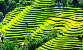Zero Landscape Definition Permaculture Not Just For Hippies 4 Beautiful Images Of