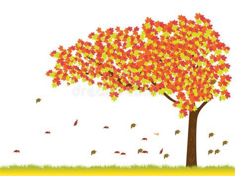 autumn season fall tree stock illustration i2767767 at featurepics maple tree in autumn season stock vector illustration of fresh llustration 33450537