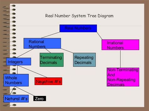 diagram of a real number system real numbers system