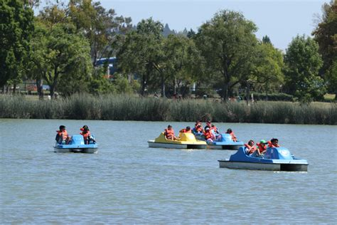 central park paddle boats boat rentals in fremont s central park fremont ca patch