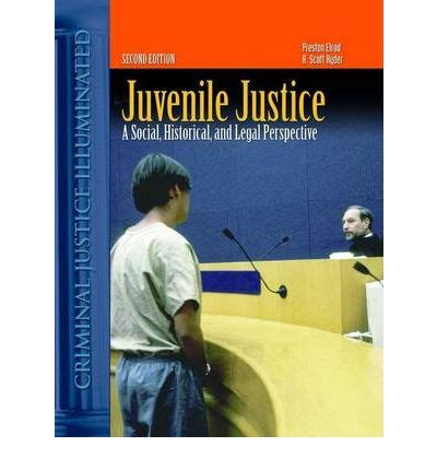 juvenile detention a guard s perspective books juvenile justice a social historical and