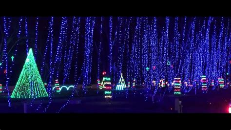 the dancing lights of christmas at jellystone park