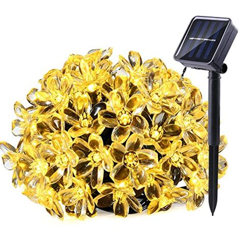 Shopping For Decorative Lights by Qedertek Solar String Lights 21ft 50 Led Flower