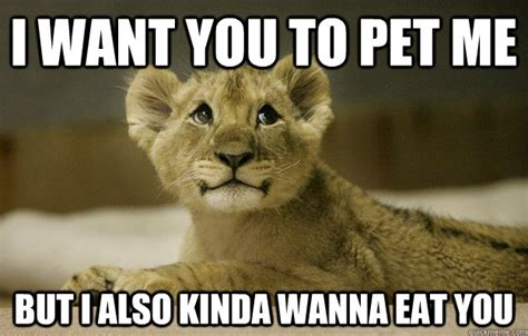 i want you meme i want you to pet me but i also kinda wanna eat you misc