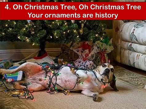christmas tree oh christmas tree your ornaments are history your dogs favourite songs
