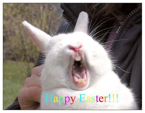 Laughing Man Comedy Barn The Sarah Billington Blog Happy Easter And Enjoy Your Noms