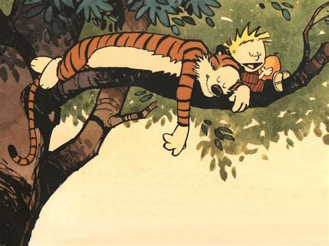 the days are just packed a calvin and hobbes collection calvin hobbes images in a different tree hd wallpaper