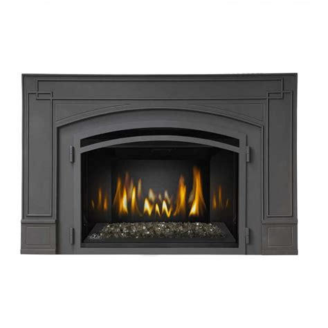 Napoleon Inserts Fireplaces by Napoleon Ir3gn Basic Fireplace Insert At Ibuyfireplaces