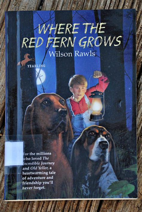 where the fern grows dogs where the fern grows dogs book covers