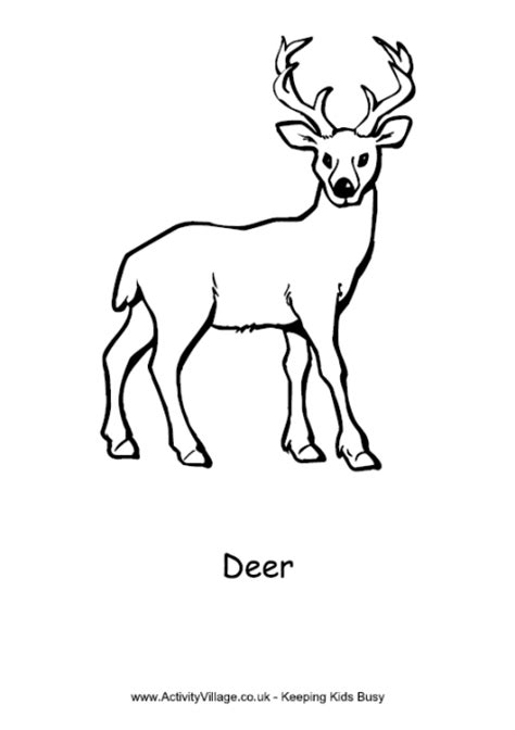 free coloring pages of deer with antlers