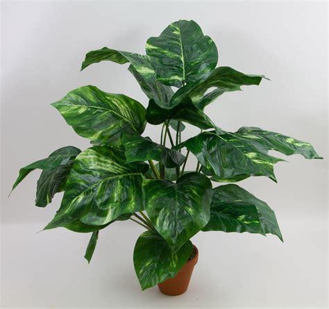 grosse pflanzentöpfe gro 223 e photos pflanze 65cm ar kunstpflanzen k 252 nstliche