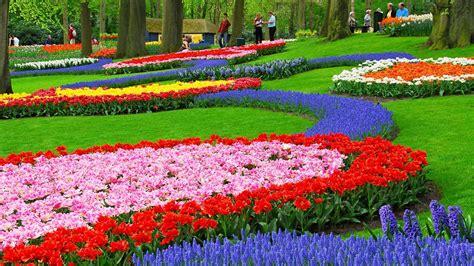 gallery for gt flowers garden wallpaper hd