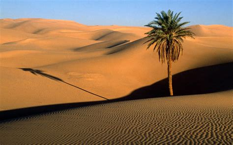 latest beautiful deserts wallpapers 2012 2013 itsmyviews com wallpapers desert wallpapers