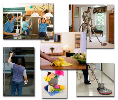 house cleaning house cleaning molly cleaning service il