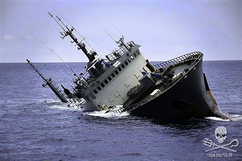 whale wars boats no whale wars here sea shepherd rescues crew of fish