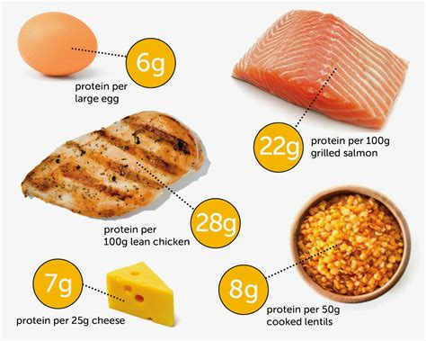protein sources planet shark fitness the best ratio of carbs protein