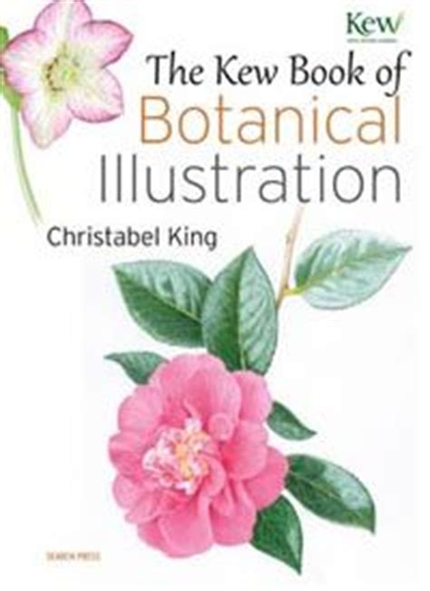 libro the art of botanical 1000 images about art books on watercolour book drawing and search