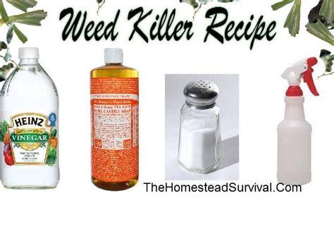 killer recipe garden