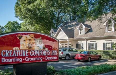 creature comforts inn durham nc pet boarding grooming and doggy daycare