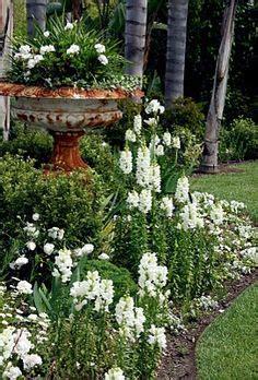 white garden ideas white gardens on formal gardens buxus and