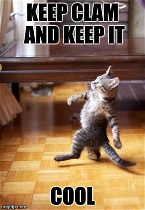 Keep Cool Meme - cool cat stroll imgflip