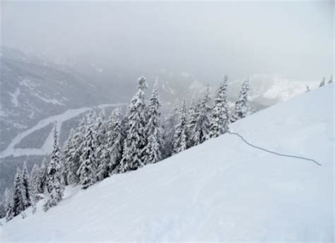 picture of snow snow fall the avalanche at tunnel creek multimedia