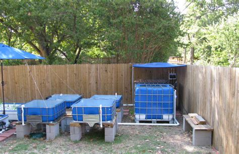 backyard aquaponics plans building an aquaponics system the planning phase