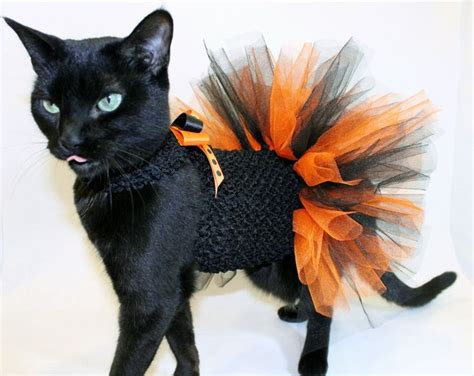 coolcats orange  black halloween costume tutu  cats
