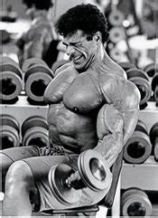 lou ferrigno bench press lou ferrignos arm routine bodybuildingcom forums