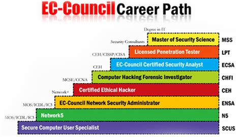 cyber security degree requirements certified ethical hacker cyber security courses