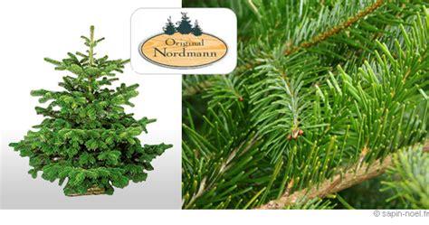 Sapin De Noel Avec Racine by Sapin De Noel Naturel Avec Racine