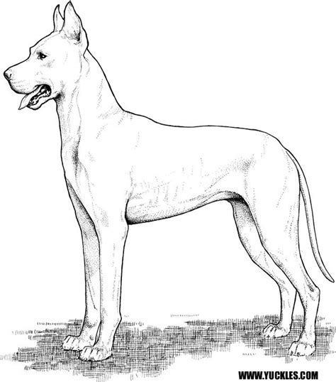 Great Coloring Pages great dane coloring page by yuckles