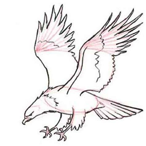 Tutorial Menggambar Burung Elang | teknik awal menggambar ayo menggambar