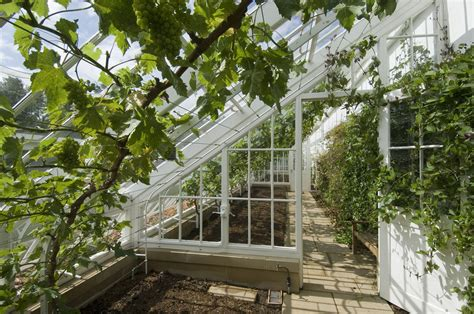 greenhouse designs which one fits your needs interior
