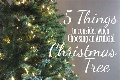 11 Things To Consider When Choosing A by 5 Things To Consider When Choosing A Tree