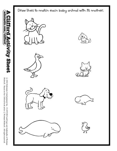 printable worksheets for preschoolers matching baby animals match activity sheet pk k teaching ideas