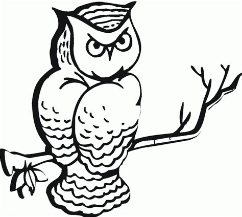 printable scary owl free printable owl coloring pages for kids