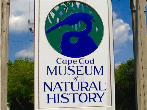 cape cod history moving to brewster 12 reasons why you should leighton