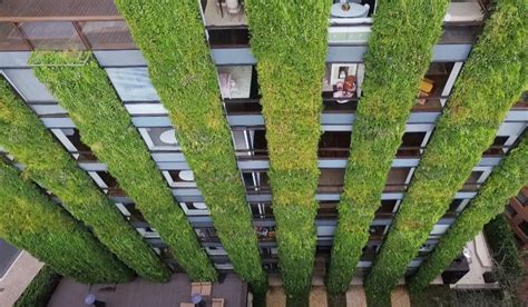 Largest Vertical Garden World S Largest Vertical Garden Blooms In The Of Bogota